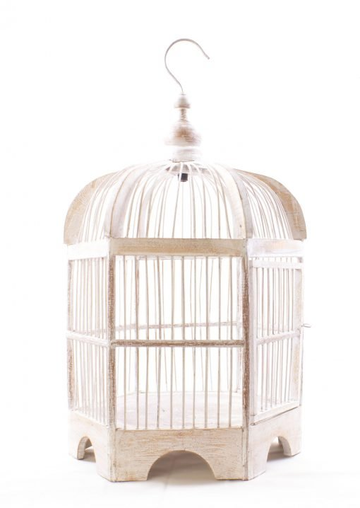 Birds & Cages BCG-0501