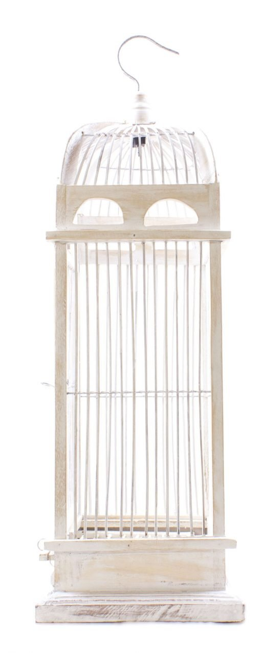 Birds & Cages BCG-0502