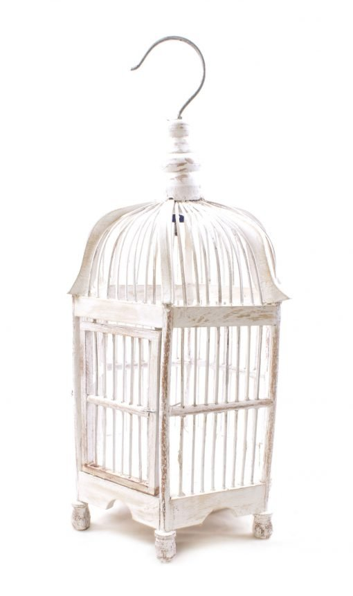 Birds & Cages BCG-0503