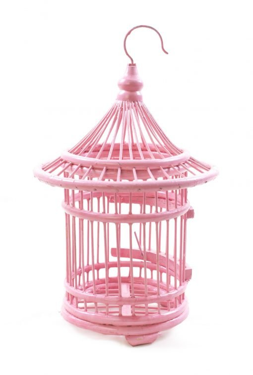 Birds & Cages BCG-0508