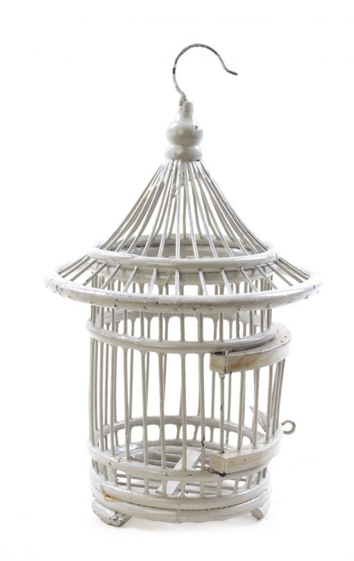 Birds & Cages BCG-0509