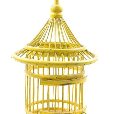Birds & Cages BCG-0510