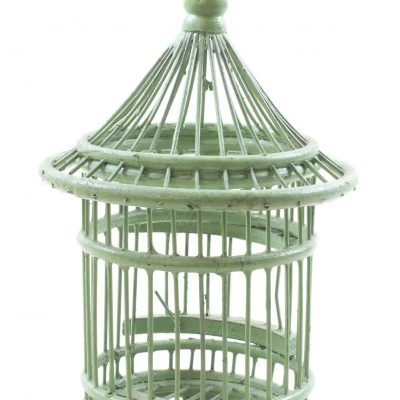 Birds & Cages BCG-0513