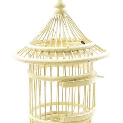 Birds & Cages BCG-0515