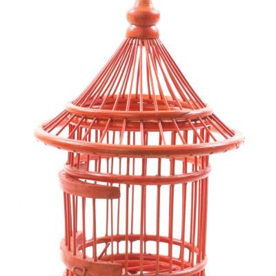Birds & Cages BCG-0516