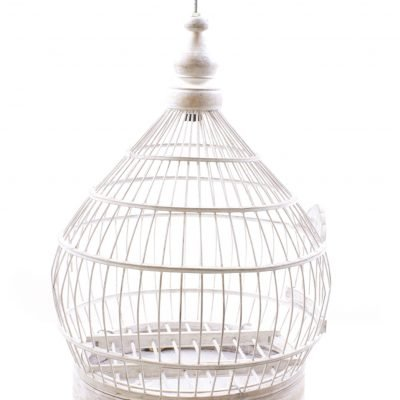 Birds & Cages BCG-0517