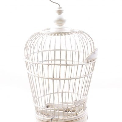 Birds & Cages BCG-0518
