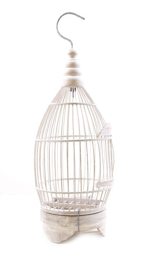 Birds & Cages BCG-0520