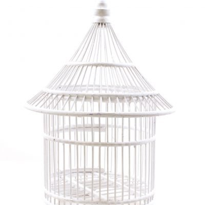 Birds & Cages BCG-0521