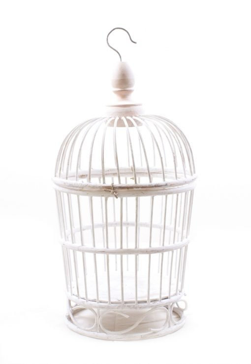 Birds & Cages BCG-0522