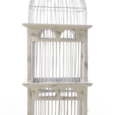 Birds & Cages BCG-0523