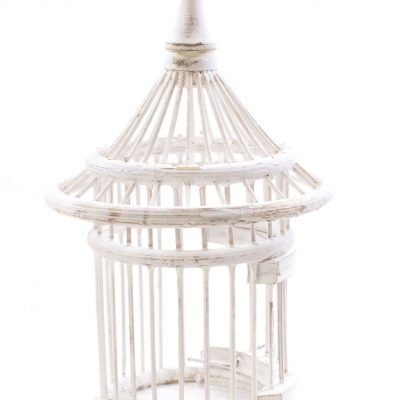 Birds & Cages BCG-0527