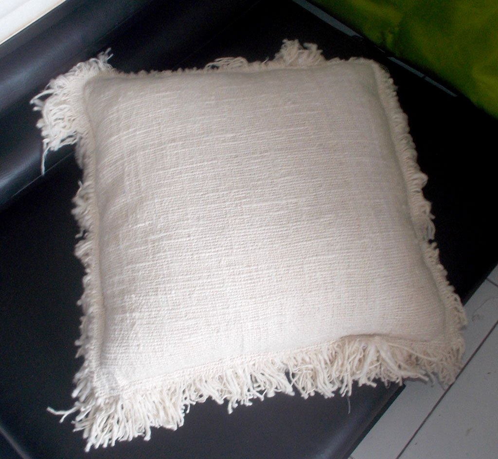 Cushion Cover Without Dacron Filler – CUS-2982A-2 1